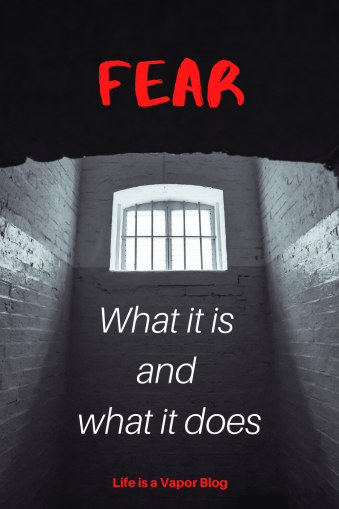 Fear_ what it is and what it does