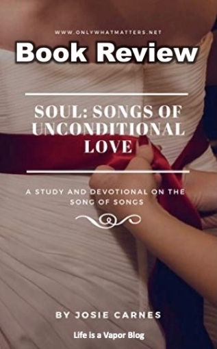 Soul Book Review Pinterest